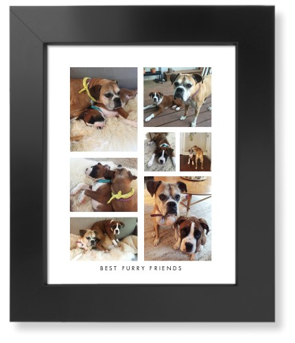 Vertical Gallery Collage of Seven Pet Art Print, Black, Signature Card Stock, 8x10, Multicolor