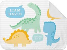 dinosaur fun baby blanket