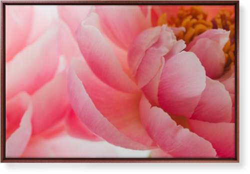 Photo Gallery Canvas Print, CANVAS_FRAME_BROWN, Single piece, 24 x 36 inches, Multicolor