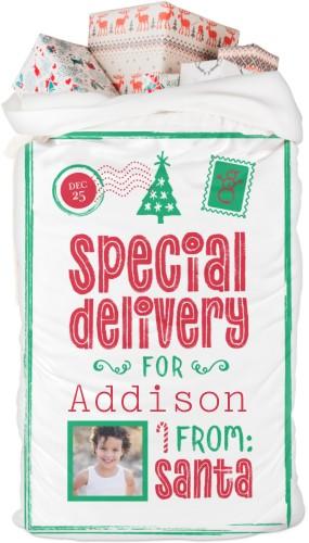 Whimsy Special Delivery Santa Sack