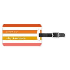 colorful stripes luggage tag