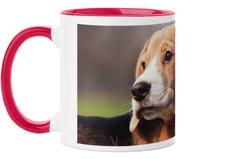 pets photo gallery mug