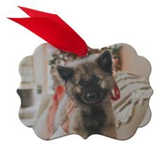 photo gallery pet metal ornament
