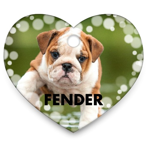 Bokeh Frame Heart Pet Tag, White