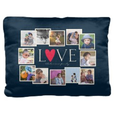 e0b081b140f love all around collage pillow. Custom Color Palette