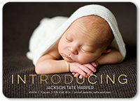 exquisite introduction birth announcement 5x7 flat