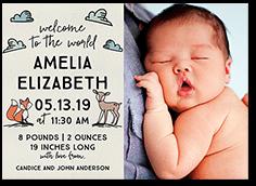 illustrated woodland birth announcement