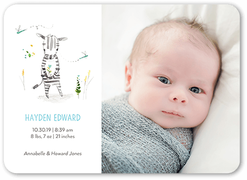 Cute Zebra Boy Birth Announcement, Rounded Corners