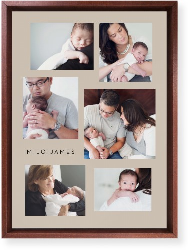 Gallery Collage of Six Mounted Wall Art, Single piece, Brown, 10 x 14 inches, Multicolor