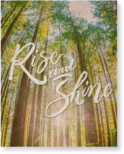 Rise and Shine Wood Wall Art, Single piece, 16 x 20 inches, Multicolor
