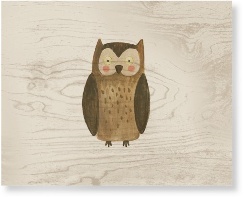 Owl Watercolor Wood Wall Art, Single piece, 16 x 20 inches, Multicolor