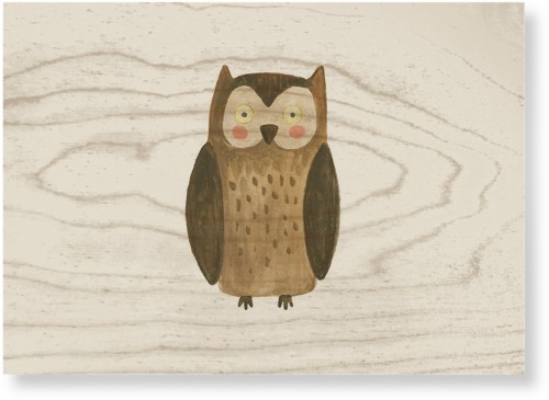 Owl Watercolor Wood Wall Art, Single piece, 10 x 14 inches, Multicolor