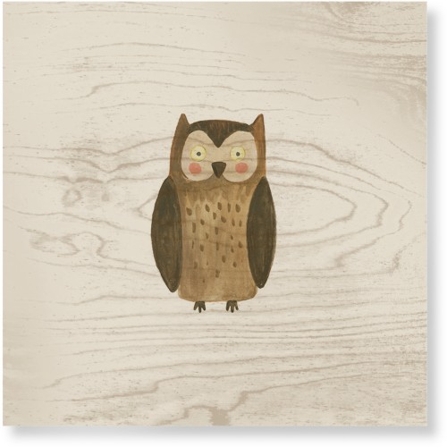 Owl Watercolor Wood Wall Art, Single piece, 16 x 16 inches, Multicolor