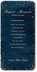 elegant sky wedding program